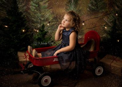 servizi fotografici natalizi asti (4)
